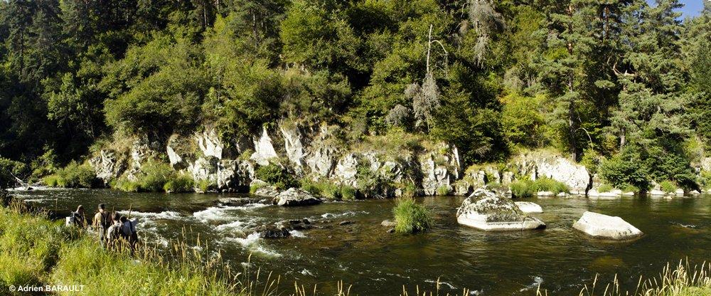 pêche tacons dans les gorges du Haut-Allier (Haute-Loire)