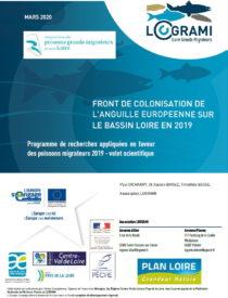Front de colonisation de l'anguille européenne sur le Bassin Loire en 2019