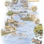 Les habitats des poissons migrateurs
