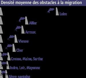 Densité des obstacles à la migration
