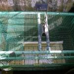 Ascenseur à poissons du barrage de Poutès