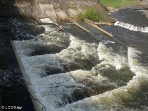 Passe à poissons pré-barrages rive gauche du pont barrage de Vichy