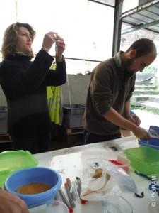 Fabrication des capsules accueillant les oeufs